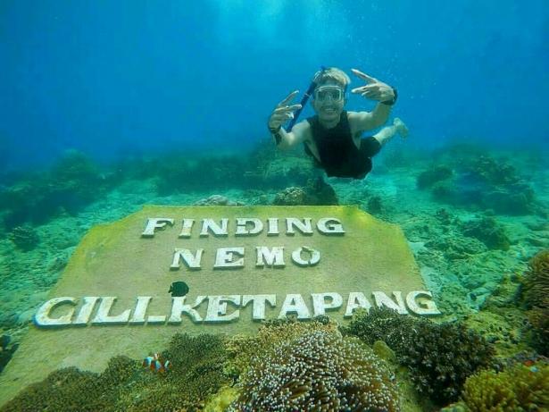 Finding Nemo, Gili Ketapang