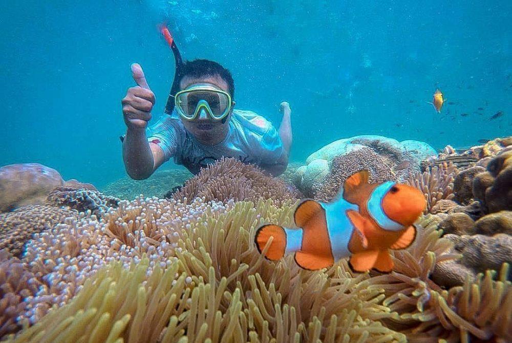 Snorkeling Bareng Nemo, di Gili Ketapang Probolinggo