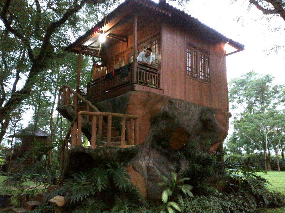 Rumah Pohon Leo, Cileungsi
