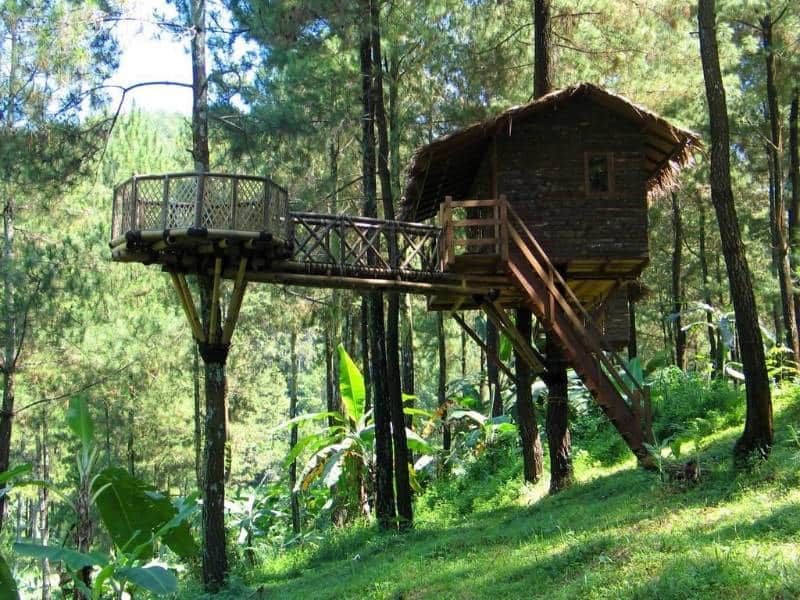 Rumah Pohon Taman Dayu